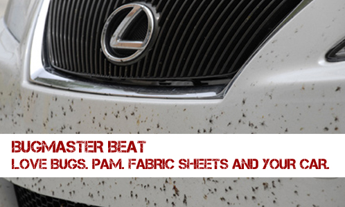 will pam cooking spray keep love bugs off the front of my car. Black Bedroom Furniture Sets. Home Design Ideas