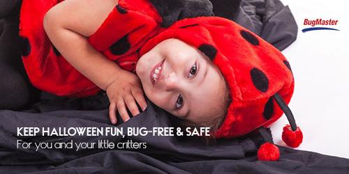 BUGMASTER_halloween_bug_tw