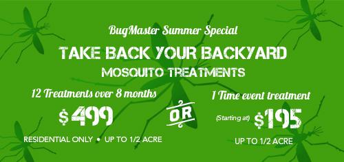 BUG_mosquito_ad
