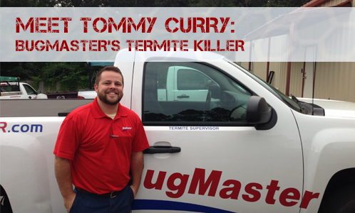 BUG_TommyCurry-BlogHeader (1)