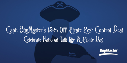 BUG_pirateday_2014_blog2
