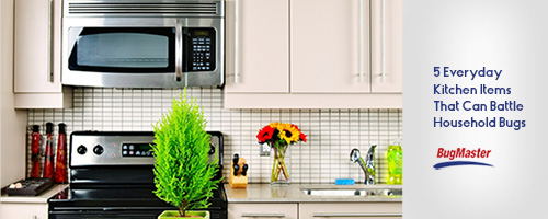 BUG_DIY_kitchen_header_blog