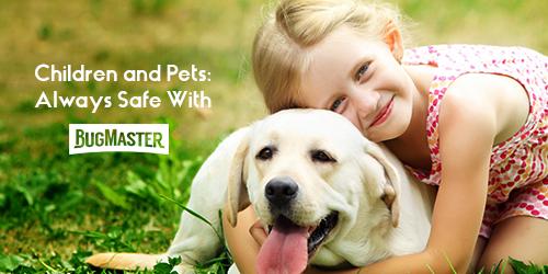 BugMaster-Blog-Pet-Safety