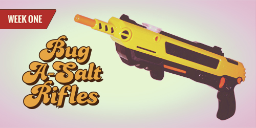 BugMaster Bug-A-Salt Rifle Giveaway