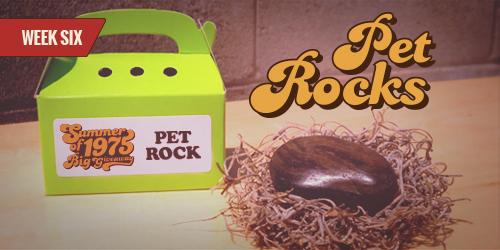 BugMaster Summer of 75 - Pet Rock Giveaway