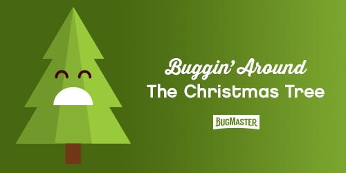 BUG-ChristmasTree-BlogHeader