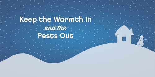 BUG-WinterPestsBlog-HEADER